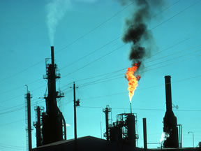 Environmental Impacts of Petroleum Use