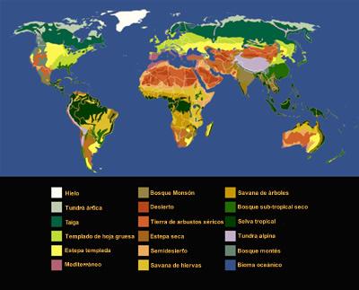 Biomas Y Ecosistemas