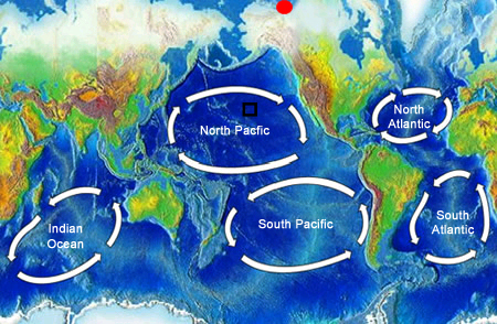 "<a href=""/earth/Water/ocean_gyres.html&dev=1"">Ocean gyres</a> are large swirling bodies of water that are often on the scale of a whole <a href=""/earth/Water/ocean.html&dev=1"">ocean</a> basin. Ocean gyres dominate the open ocean and represent the long-term average pattern of ocean <a href=""/earth/Water/ocean_currents.html&dev=1"">surface currents</a>. This image shows the five major ocean gyres. Gyres rotate in a clockwise direction in the Northern hemisphere and a counter-clockwise direction in the Southern hemisphere because of the <a href=""/physical_science/physics/mechanics/Coriolis.html&dev=1"">Coriolis Effect</a>.<p><small><em> Windows Original (Original map is from <a href=""http://commons.wikimedia.org/wiki/Main_Page"">Wikipedia Commons</a>)</em></small></p>"