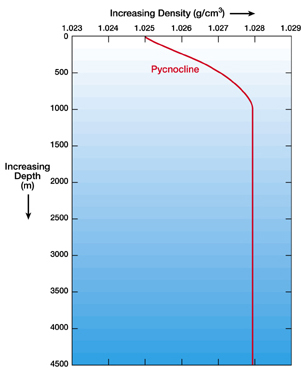 Density of Ocean Water