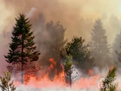 "<p>Something on Earth is always burning! NASA's Earth Observatory tracks wildfires across the world with <a href=""http://earthobservatory.nasa.gov/GlobalMaps/view.php?d1=MOD14A1_M_FIRE"" target=""_blank"">maps available for viewing</a> from 2000-present. Some wildfires can restore <a href=""/earth/ecosystems.html"">ecosystems</a> to good health, but many can threaten human populations, posing a natural disaster threat.</p>