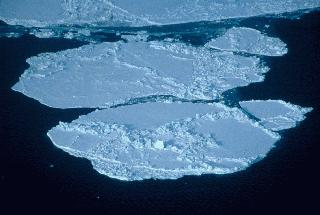 "The production of sea ice is also important to the layering of water in the Arctic Ocean. As <a href=""/earth/polar/sea_ice.html&dev=1"">sea ice</a> is made near the Bering Strait, salt is released into the remaining non-frozen water. This non-frozen water becomes very salty and very dense and so it sinks below the cold, relatively fresh Arctic water, forming a layer known as the <a href=""/earth/Water/salinity_depth.html&dev=1"">Halocline</a>. The Halocline layer acts as a buffer between sea ice and the warm, salty waters that have come in from the Atlantic.<p><small><em>   NASA</em></small></p>"