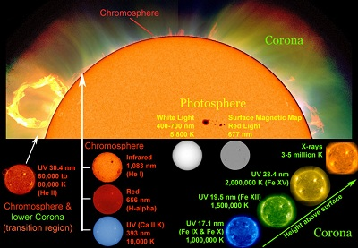 "Astronomers use different wavelengths of light and other <a href=""/physical_science/magnetism/em_radiation.html&edu=elem"">electromagnetic emissions</a> as <a href=""/sun/spectrum/multispectral_sun.html&edu=elem"">""windows"" into different regions of the Sun</a>. White light with a <a href=""/physical_science/basic_tools/wavelength.html&edu=elem"">wavelength</a> between 400 and 700 nanometers (nm) shows the <a href=""/sun/atmosphere/photosphere.html&edu=elem"">photosphere</a>, the visible ""surface"" of the Sun. Other wavelengths highlight different features of the Sun, such as its <a href=""/sun/sun_magnetic_field.html&edu=elem"">magnetic field</a>, the <a href=""/sun/atmosphere/chromosphere.html&edu=elem"">chromosphere</a> and the <a href=""http://www.windows2universe.org/sun/atmosphere/corona.html"">corona</a>.<p><small><em>Composite image courtesy of Windows to the Universe using images from SOHO (NASA and ESA), NCAR/HAO/MLSO, Big Bear Solar Observatory, and SDO/AIA.</em></small></p>"